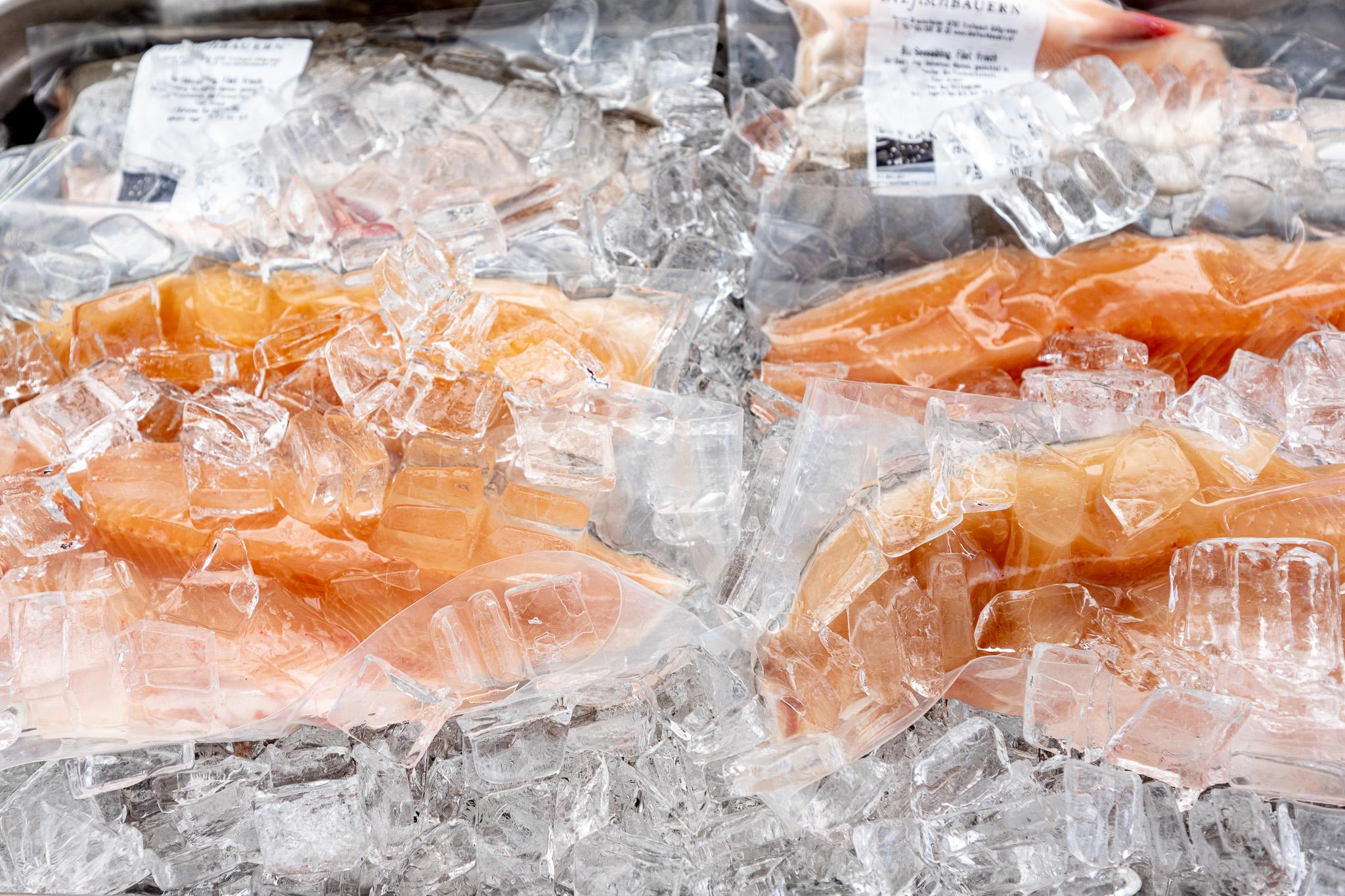 Die fischbauern – ©Michaela Krauss-Boneau